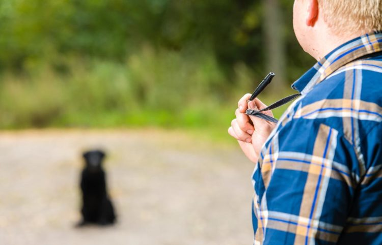 man holding a black whistle for his black dog