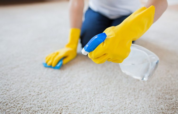 woman in rubber gloves with cloth and detergent spray cleaning carpet at home