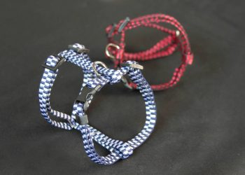 Two colors of dog harness on a black background