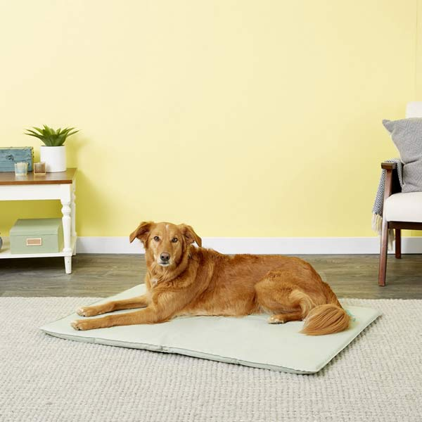 K&H Pet Products Cooling Mat