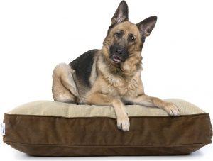 eLuxurySupply Dog Beds