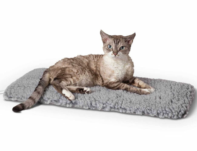 K&H Pet Products Thermo Plush Cat & Dog Bed