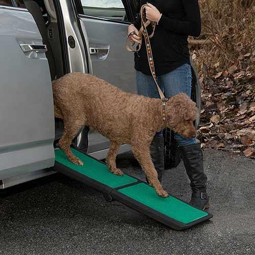 Pet Gear Travel