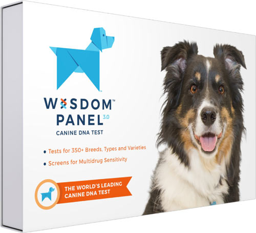 Wisdom Panel 3.0 Breed Identification Dog DNA Test