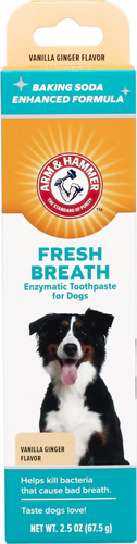 Arm & Hammer Dental Fresh Breath Enzymatic Vanilla Ginger