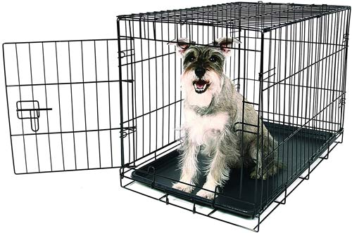 Carlson Pet Products Secure & Compact Single Door Collapsible Wire