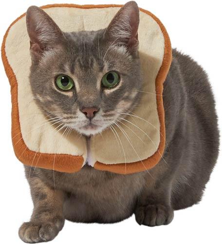 Frisco Bread Cat Costume